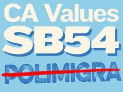 ca_values_act_logo